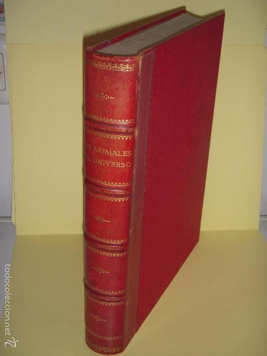 LOS ANIMALES DEL UNIVERSO (SU VIDA Y SUS COSTUMBRES) - J.B. DE AGUILAR-AMAT - EDIT. SEGUI HACIA 1920 (Libros Antiguos, Raros y Curiosos - Ciencias, Manuales y Oficios - Bilogía y Botánica)