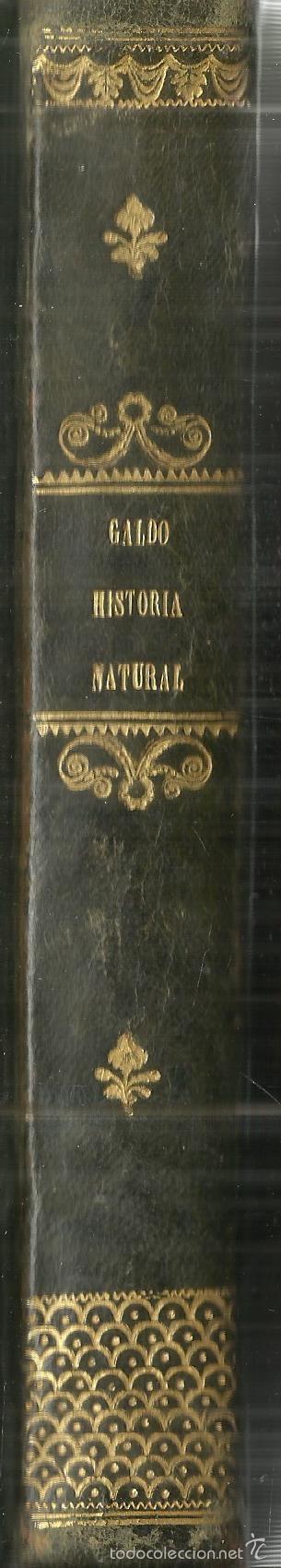 Libros antiguos: MANUAL DE HISTORIA NATURAL. MANUEL MARÍA JOSÉ DE GALDO. IMP. D.B. GONZÁLEZ. MADRID. 1853 - Foto 5 - 58091284