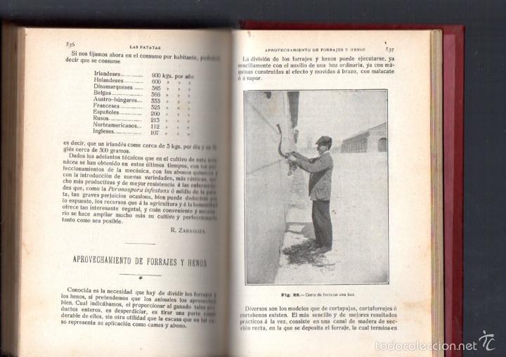 Libros antiguos: RESUMEN DE AGRICULTURA AÑO 1914 - Foto 2 - 46859046