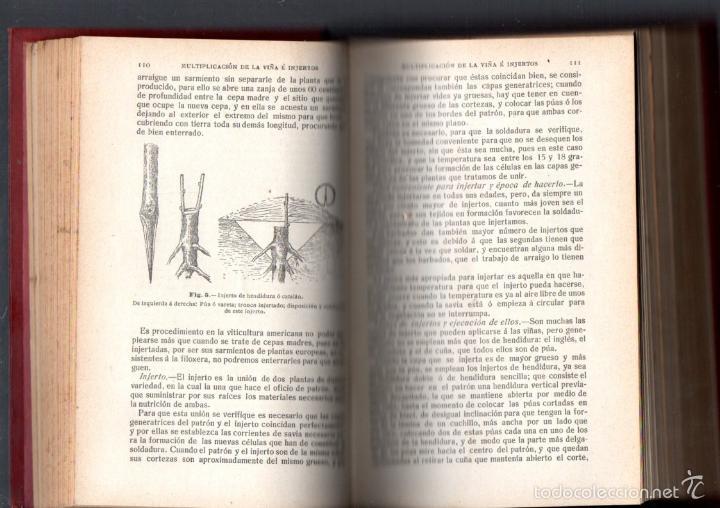 Libros antiguos: RESUMEN DE AGRICULTURA AÑO 1914 - Foto 3 - 46859046