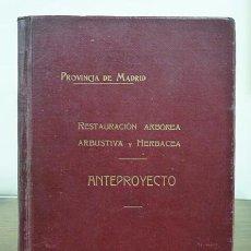 Libros antiguos: ANTEPROYECTO. RESTAURACIÓN ARBÓREA Y FOMENTO DE LA RIQUEZA FORESTAL DE LA PROVINCIA DE MADRID, 1929. Lote 58583788