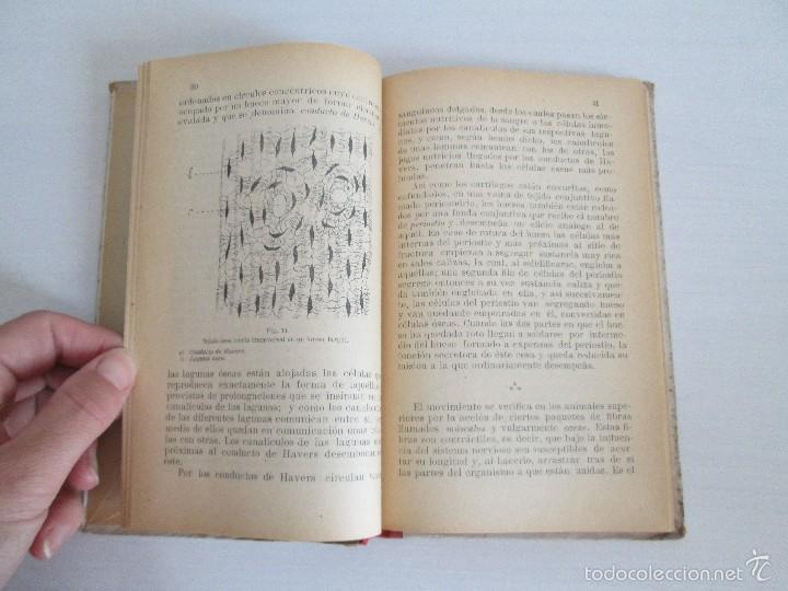 Libros antiguos: LECTURAS BIOLOGICAS. EMILIO FERNANDEZ GALIANO. CIENCIAS NATURALES. 1916. VER FOTOS - Foto 9 - 60674663