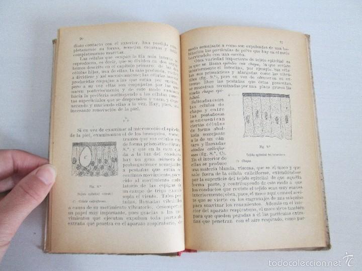 Libros antiguos: LECTURAS BIOLOGICAS. EMILIO FERNANDEZ GALIANO. CIENCIAS NATURALES. 1916. VER FOTOS - Foto 10 - 60674663