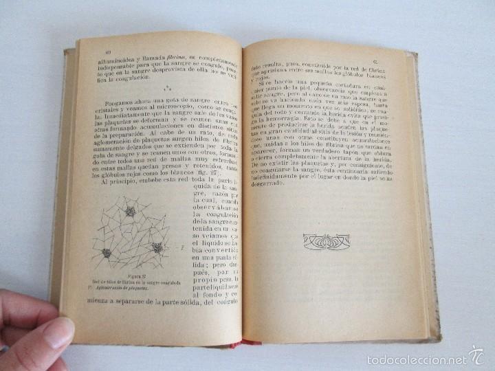 Libros antiguos: LECTURAS BIOLOGICAS. EMILIO FERNANDEZ GALIANO. CIENCIAS NATURALES. 1916. VER FOTOS - Foto 11 - 60674663