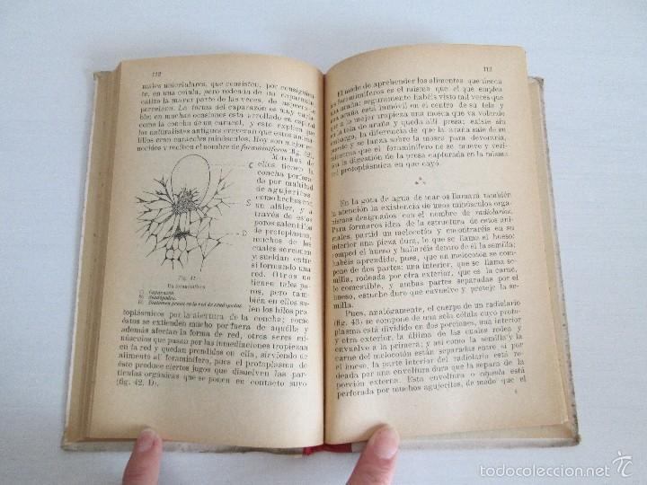 Libros antiguos: LECTURAS BIOLOGICAS. EMILIO FERNANDEZ GALIANO. CIENCIAS NATURALES. 1916. VER FOTOS - Foto 12 - 60674663