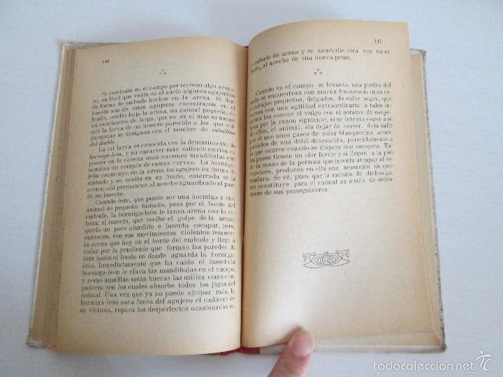 Libros antiguos: LECTURAS BIOLOGICAS. EMILIO FERNANDEZ GALIANO. CIENCIAS NATURALES. 1916. VER FOTOS - Foto 13 - 60674663