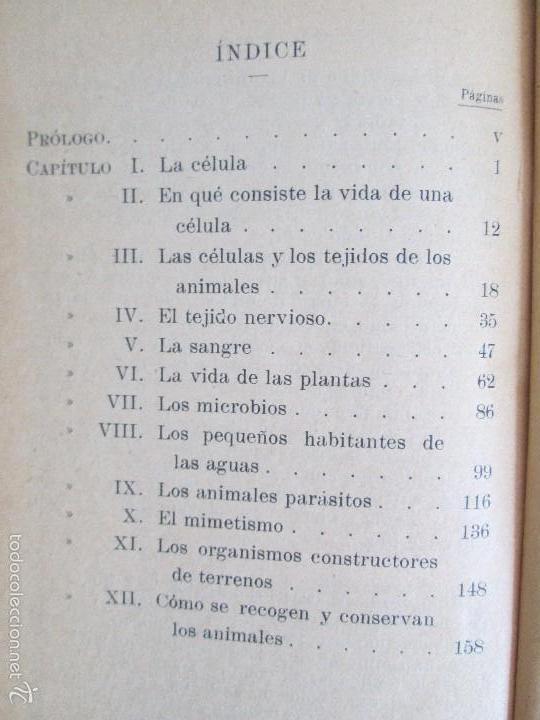Libros antiguos: LECTURAS BIOLOGICAS. EMILIO FERNANDEZ GALIANO. CIENCIAS NATURALES. 1916. VER FOTOS - Foto 14 - 60674663