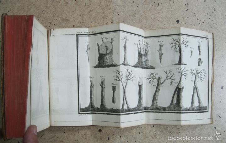 Libros antiguos: La practique du Jardinage.1774.Roger Schabol. Con diez grabados - Foto 7 - 60682227