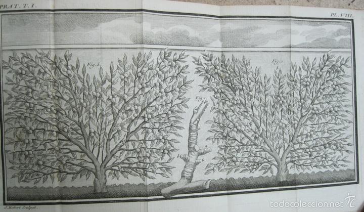 Libros antiguos: La practique du Jardinage.1774.Roger Schabol. Con diez grabados - Foto 10 - 60682227