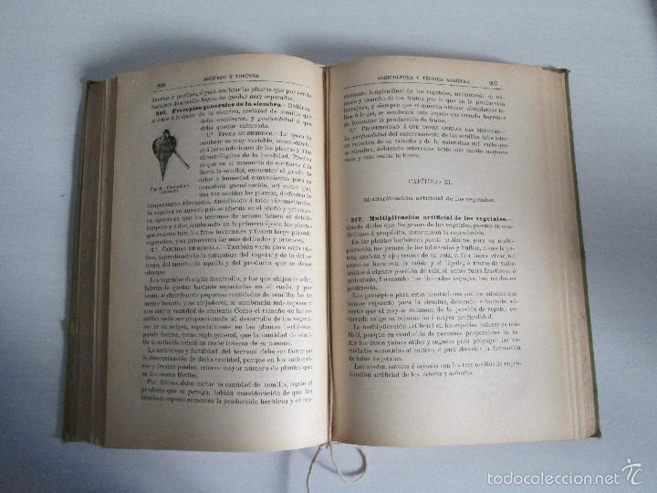 Libros antiguos: AGRICULTURA Y TECNICA AGRICOLA INDUSTRIAL. PRIMERA Y SEGUNDA PARTE. REQUEJO Y TORTOSA. - Foto 20 - 61012467