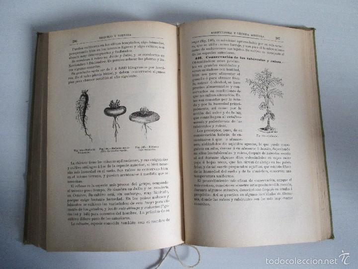 Libros antiguos: AGRICULTURA Y TECNICA AGRICOLA INDUSTRIAL. PRIMERA Y SEGUNDA PARTE. REQUEJO Y TORTOSA. - Foto 21 - 61012467