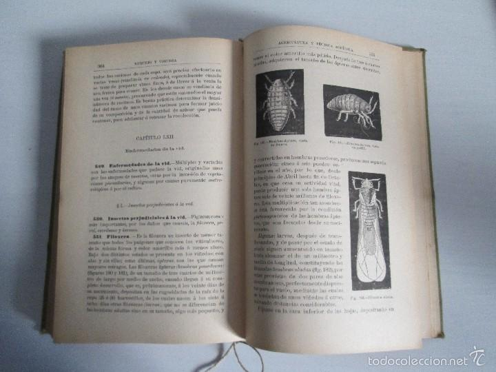 Libros antiguos: AGRICULTURA Y TECNICA AGRICOLA INDUSTRIAL. PRIMERA Y SEGUNDA PARTE. REQUEJO Y TORTOSA. - Foto 22 - 61012467