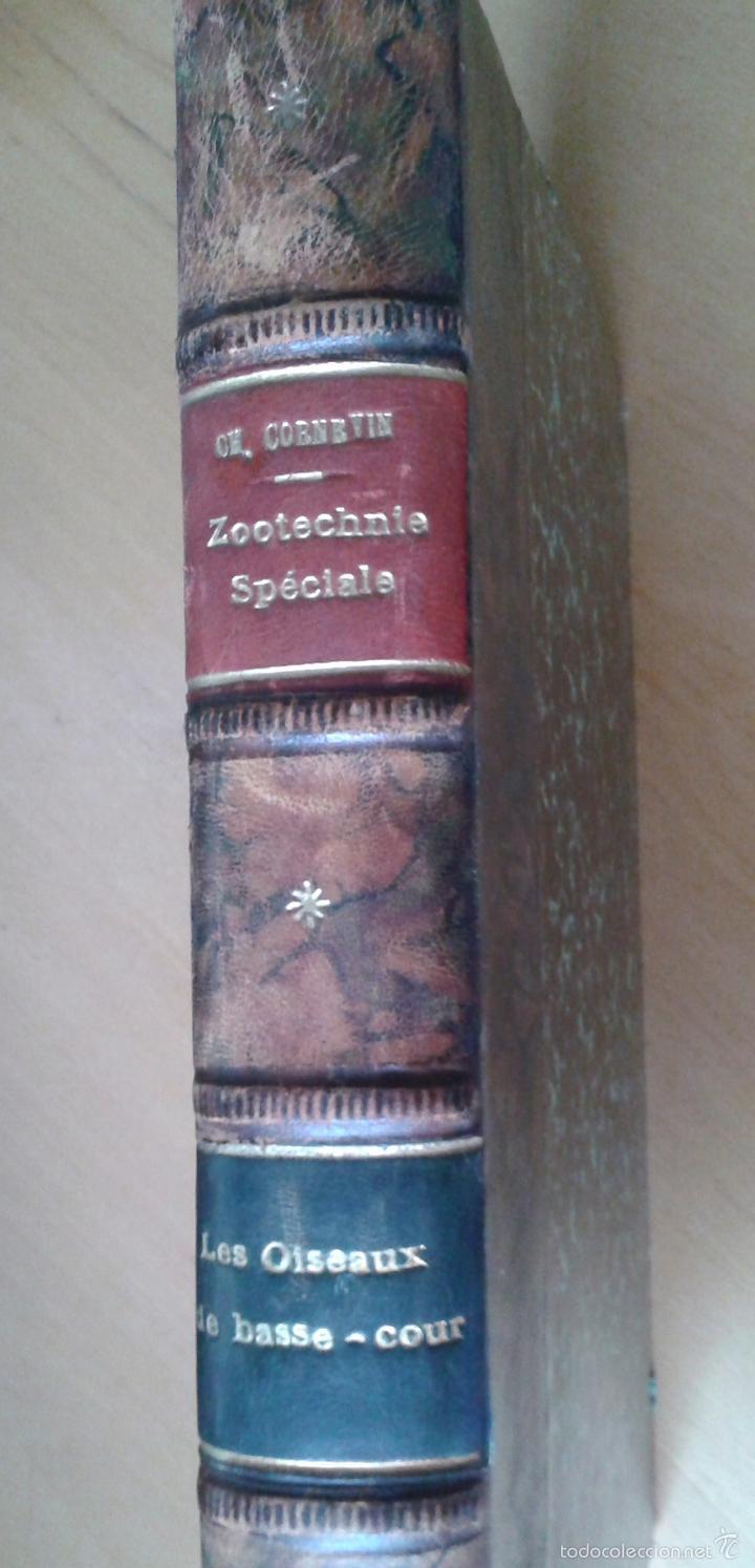 Libros antiguos: Traité de Zootechnie Spéciale- Ch. Cornevin - París 1895 - Foto 6 - 61272895