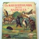 Libros antiguos: LA MARAVILLOSA VIDA DE LOS ANIMALES RH FRANCÉ ZOOLOGÍA ALCANCE TODOS ED LABOR SIN FECHA. Lote 61411095