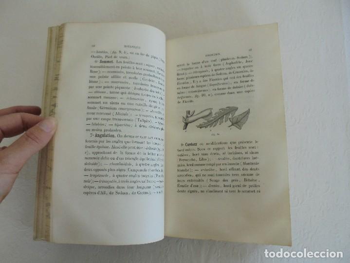 Libros antiguos: BOTANIQUE ET PHYSIOLOGIE VEGETALE. L.F. JEHAN. MANE ET 1847. VER FOTOGRAFIAS ADJUNTAS. - Foto 24 - 64168795