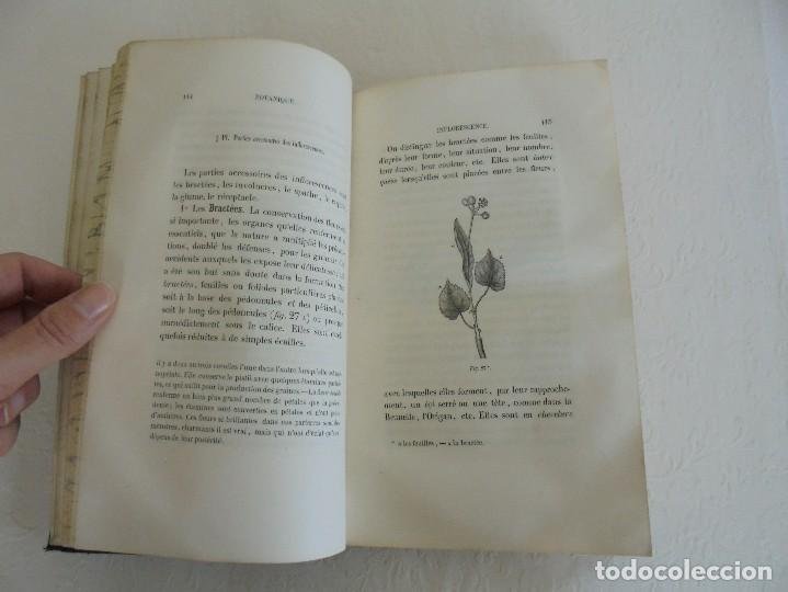 Libros antiguos: BOTANIQUE ET PHYSIOLOGIE VEGETALE. L.F. JEHAN. MANE ET 1847. VER FOTOGRAFIAS ADJUNTAS. - Foto 25 - 64168795
