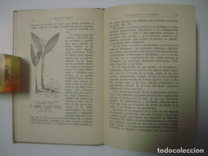 Libros antiguos: B.FERNÁNDEZ. INTRODUCCIÓN A LA BOTÁNICA. COLECCIÓN LABOR. 1942. - Foto 2 - 183466071