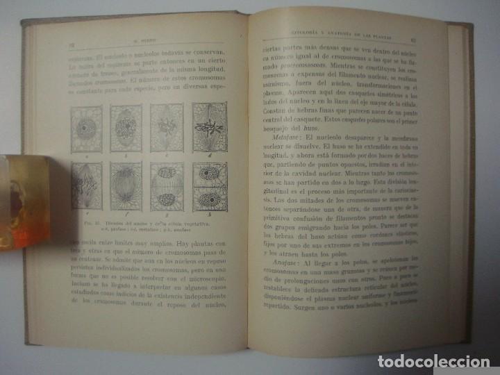 Libros antiguos: PROF.DR.HUGO MIEHE. CITOLOGIA Y ANATOMÍA DE LAS PLANTAS. COLECCIÓN LABOR. 1928 - Foto 3 - 67729049