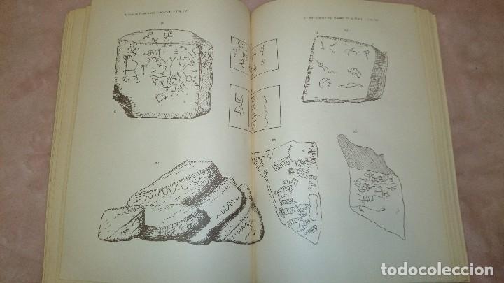 Libros antiguos: LA ANTIGUEDAD DEL HOMBRE EN LA PLATA,FLORENTINO AMEGHINO - Foto 9 - 69427997