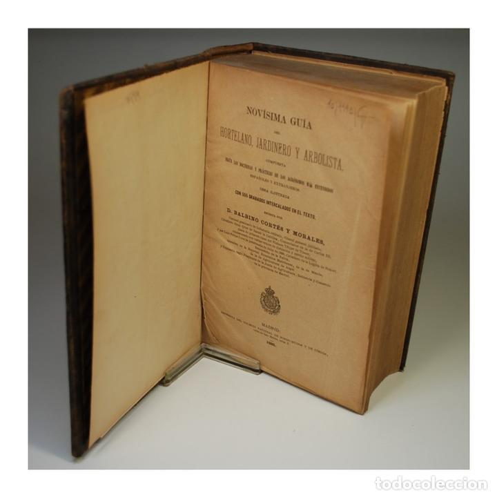 Libros antiguos: GUIA DEL JARDINERO Y ARBOLISTA (1885) - BALBINO CORTÉS Y MORALES - Foto 2 - 58128000