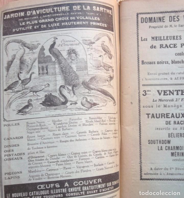 Libros antiguos: 49e Exposition Internationale d'Aviculture a Paris 1924 Palmarès Catalogue TBE avicultura - Foto 3 - 72802595