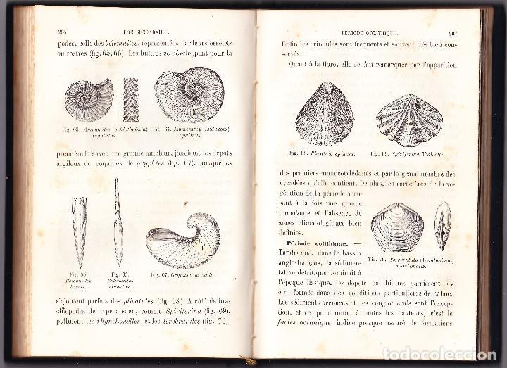 Libros antiguos: ABREGE DE GEOLOGIE - LAPPARENT - 1886 LIBRAIRIE F SAVY - Foto 4 - 73301275