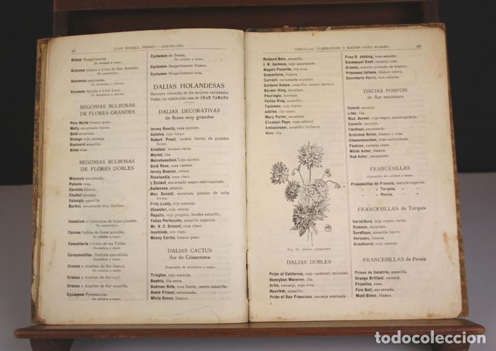 8330 - GUÍA DEL HORTICULTOR. JUAN NONELLS FEBRÉS. SIGLO XX. (Libros Antiguos, Raros y Curiosos - Ciencias, Manuales y Oficios - Bilogía y Botánica)