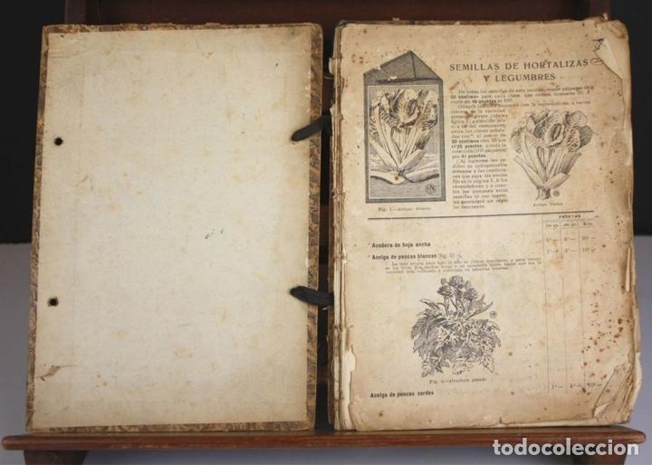 Libros antiguos: 8330 - GUÍA DEL HORTICULTOR. JUAN NONELLS FEBRÉS. SIGLO XX. - Foto 2 - 73982379
