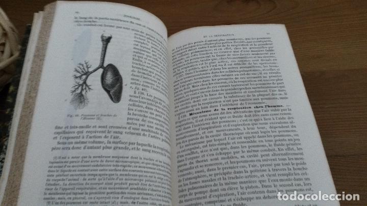 Libros antiguos: ZOOLOGIE. M. MILNE EDWARDS. COURS ELEMENTAIRE D`HISTOIRE NATURELLE. PARIS 1858. EN FRANCES - Foto 3 - 75677607