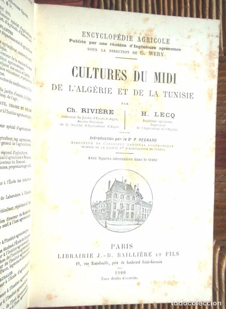 Libros antiguos: Encyclopédie Agricole: Cultures du Midi, de l'Algérie et de la Tunisie Rivière et Lecq 1906 TBE - Foto 2 - 75929675