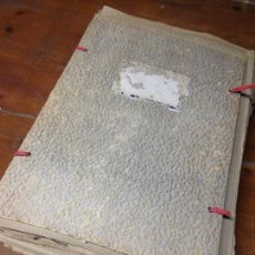 Libros antiguos: ANTIGUO HERBARIO BIOLOGÍA PLANTAS. Lote 77244721