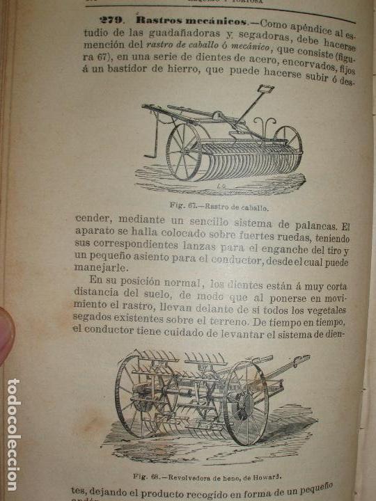Libros antiguos: TRATADO DE AGRICULTURA ELEMENTAL + PROGRAMA DEL CURSO. FEDERICO REQUEJO Y MARIANO TORTOSA. 1901 - Foto 4 - 78341521