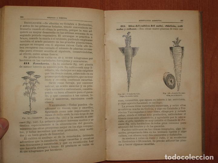 Libros antiguos: TRATADO DE AGRICULTURA ELEMENTAL + PROGRAMA DEL CURSO. FEDERICO REQUEJO Y MARIANO TORTOSA. 1901 - Foto 6 - 78341521