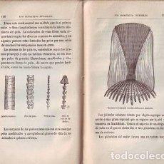Old books - ROGER, ARÍSTIDES: LOS MONSTRUOS INVISIBLES. 1880 - 81913808