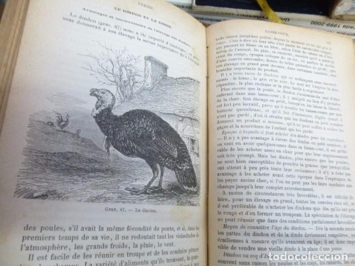 Libros antiguos: Maison Rustique des dames, Mme. Millet- Robinet 2 tomos quinta Edición (1899) - Foto 6 - 82882112