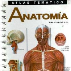 VE15 - ATLAS TEMÁTICO de 96 Pags: - ANATOMIA HUMANA - EDITA - IDEA BOOKS -FANTASTICOS DIBUJOS