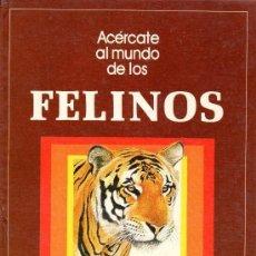 Libros antiguos: FELINOS ACERCATE AL MUNDO DE LOS FELINOS. Lote 88888792
