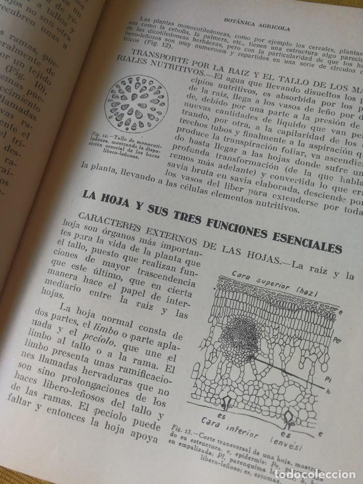 Libros antiguos: PRINCIPIOS DE AGRICULTURA. TÉCNICA AGRÍCOLA E INDUSTRIAL Y ECONÓMICA. BERTOLOME DARDER. 1935 - Foto 4 - 89830668