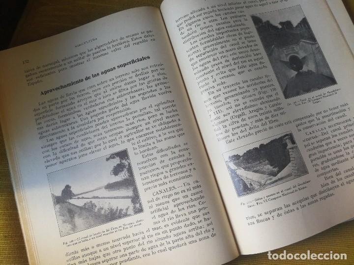 Libros antiguos: PRINCIPIOS DE AGRICULTURA. TÉCNICA AGRÍCOLA E INDUSTRIAL Y ECONÓMICA. BERTOLOME DARDER. 1935 - Foto 5 - 89830668