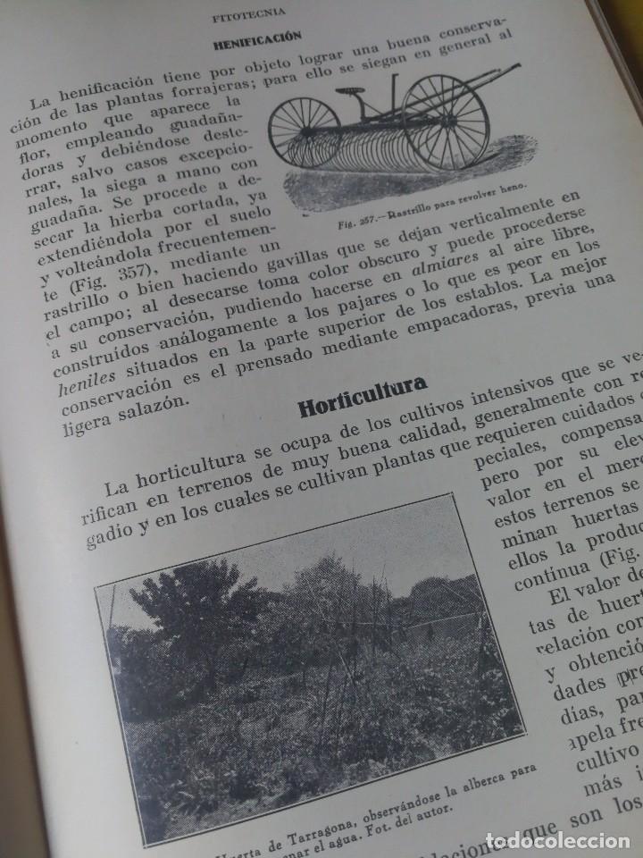 Libros antiguos: PRINCIPIOS DE AGRICULTURA. TÉCNICA AGRÍCOLA E INDUSTRIAL Y ECONÓMICA. BERTOLOME DARDER. 1935 - Foto 7 - 89830668