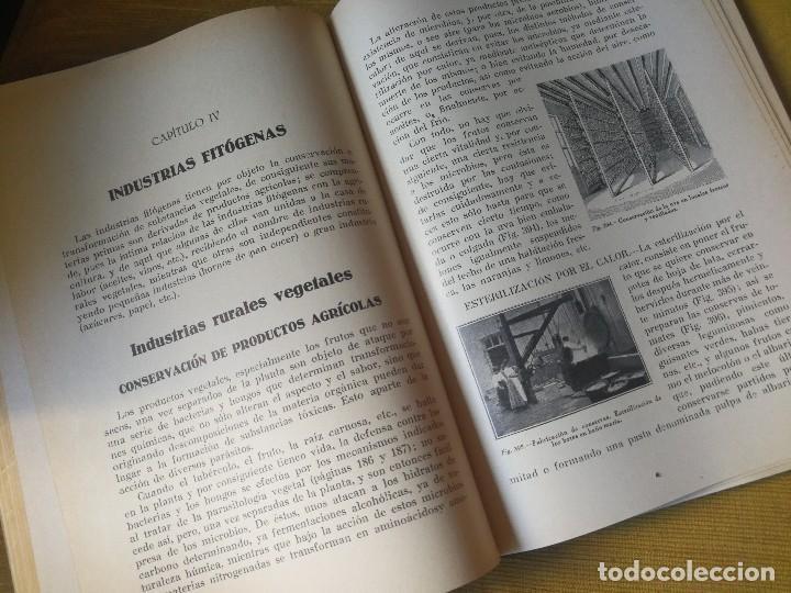 Libros antiguos: PRINCIPIOS DE AGRICULTURA. TÉCNICA AGRÍCOLA E INDUSTRIAL Y ECONÓMICA. BERTOLOME DARDER. 1935 - Foto 8 - 89830668