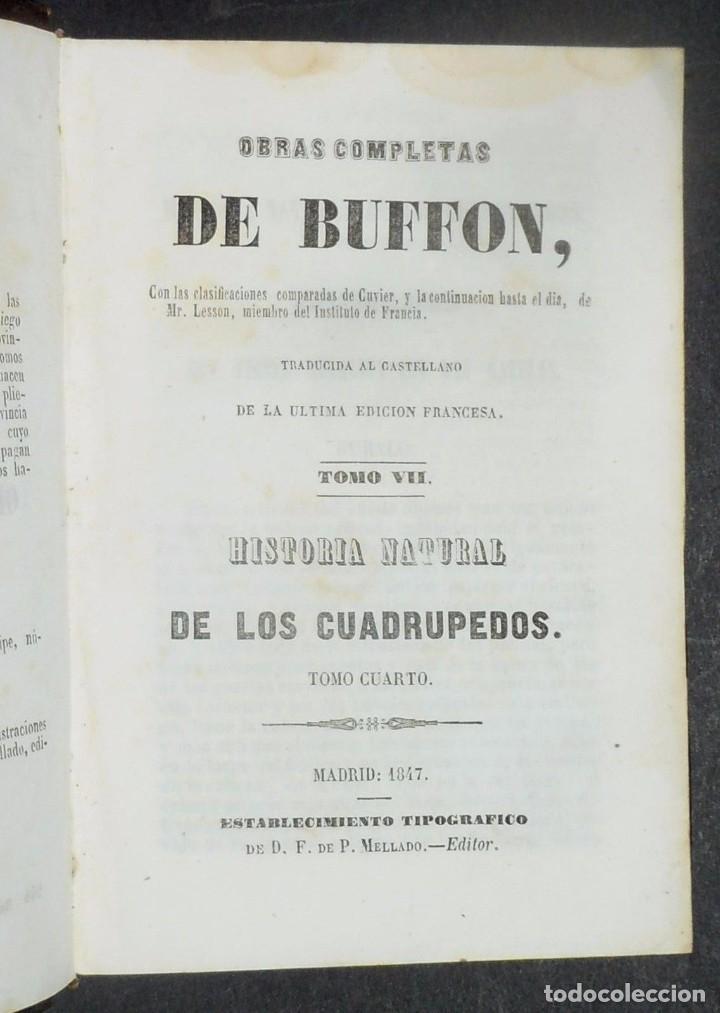 Libros antiguos: 1847 - Buffon - Historia natural los cuadrupedos - Foto 3 - 90425344