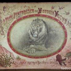 Libros antiguos: ÁLBUM PINTORESCO DE HISTORIA NATURAL. VARIOS AUTORES. EDITORES JUAN Y ANTONIO BASTINOS. 1884.. Lote 90731365
