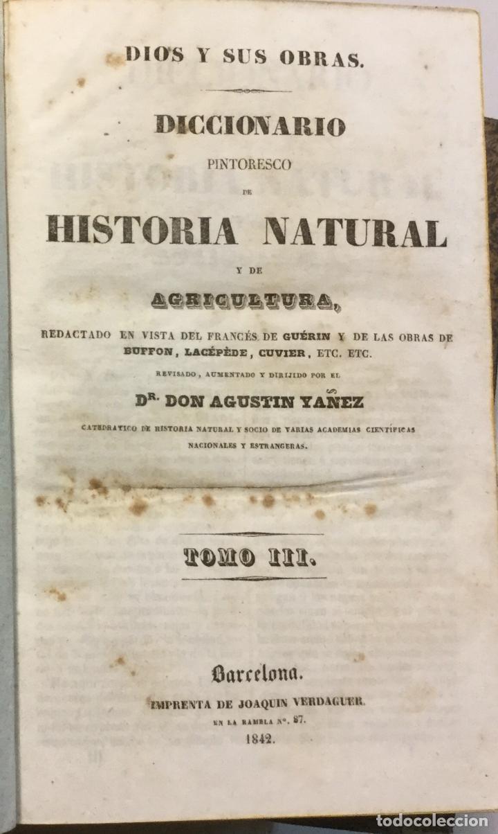 Libros antiguos: YÁÑEZ, AGUSTIN. DICCIONARIO PINTORESCO DE HISTORIA NATURAL Y DE AGRICULTURA. CON NUMEROSAS LÁMINAS. - Foto 4 - 91249040
