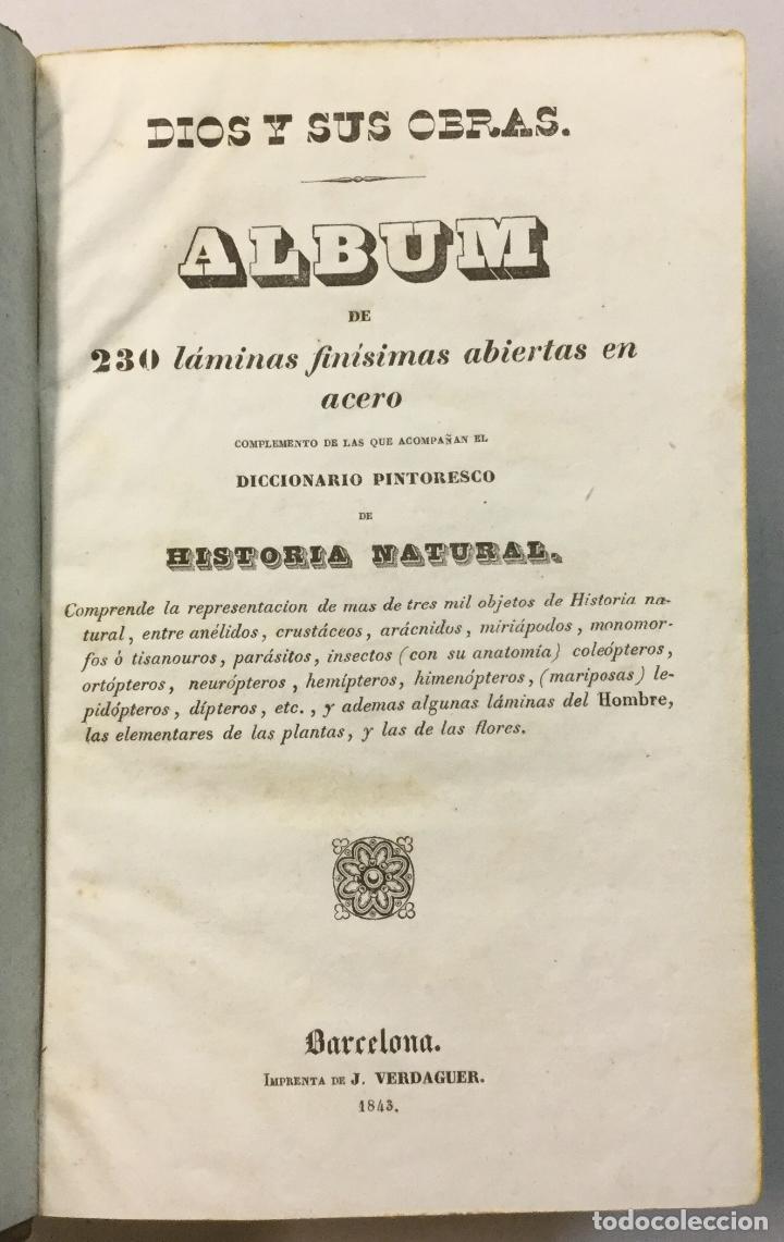 Libros antiguos: YÁÑEZ, AGUSTIN. DICCIONARIO PINTORESCO DE HISTORIA NATURAL Y DE AGRICULTURA. CON NUMEROSAS LÁMINAS. - Foto 6 - 91249040