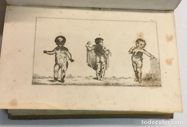 Libros antiguos: YÁÑEZ, AGUSTIN. DICCIONARIO PINTORESCO DE HISTORIA NATURAL Y DE AGRICULTURA. CON NUMEROSAS LÁMINAS. - Foto 12 - 91249040
