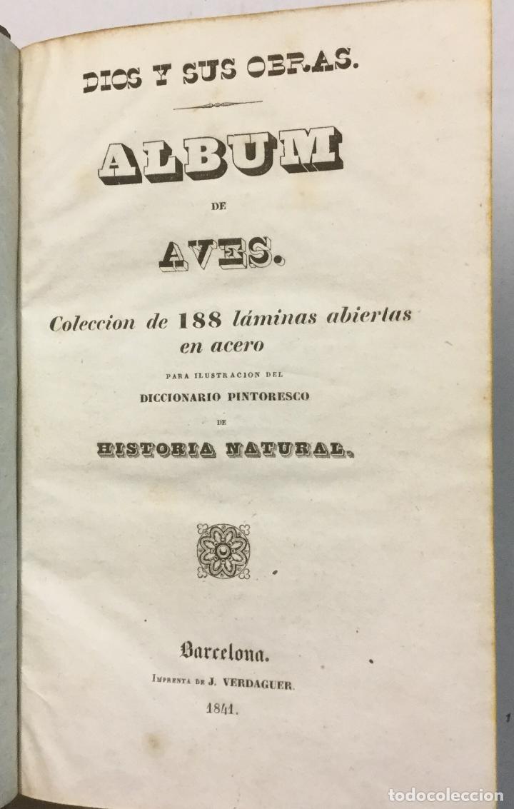 Libros antiguos: YÁÑEZ, AGUSTIN. DICCIONARIO PINTORESCO DE HISTORIA NATURAL Y DE AGRICULTURA. CON NUMEROSAS LÁMINAS. - Foto 21 - 91249040