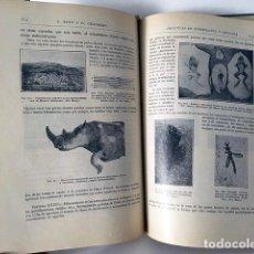 Libros antiguos: ROYO : PRÁCTICAS DE MINERALOGÍA Y GEOLOGÍA. (SANTANDER, 1928) (LÁMINAS DE SÓLIDOS CRISTALOGRÁFICOS. Lote 92198375