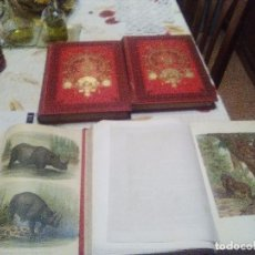 Libros antiguos: HISTORIA NATURAL 4 TOMOS MONTANER EDIT, 1880. Lote 93402730
