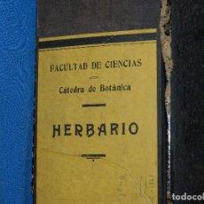 Libros antiguos: (MF) HERBOLARIO ( HERBARIO ) FACULTAD DE CIENCIAS , CATEDRA DE BOTANICA , 40 CLASES DE PLANTAS. Lote 93560050